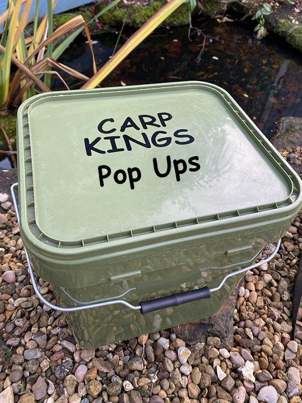 carp fishing pop up stickers